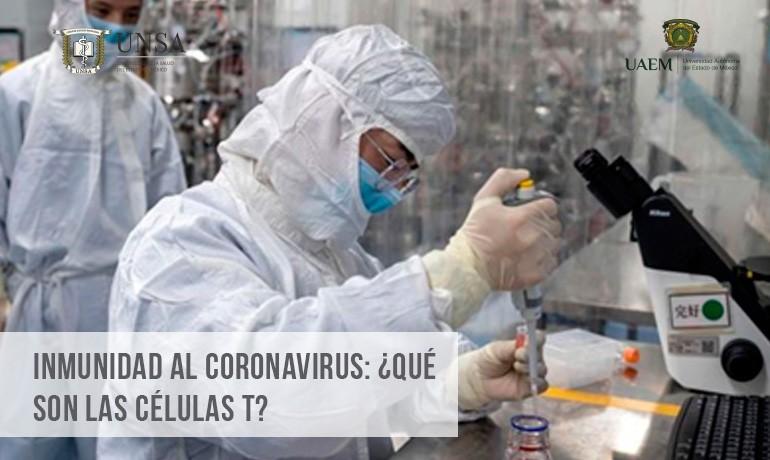 UNSA - Coronavirus